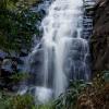 Sheoak Falls (1 Of 1)