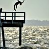 Wharf Jumping