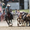 The Bungendore Rodeo 2013 - 012