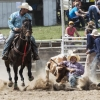 The Bungendore Rodeo 2013 - 013