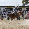 The Bungendore Rodeo 2013 - 008