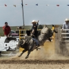 The Bungendore Rodeo 2013 - 005