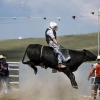 The Bungendore Rodeo 2013 - 009