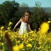 darrell buttercups 4