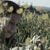 darrell buttercups 2