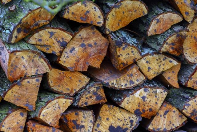 Log Pile Small