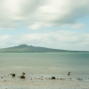 Glorious Rangitoto