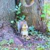 Walk Squirrel 2