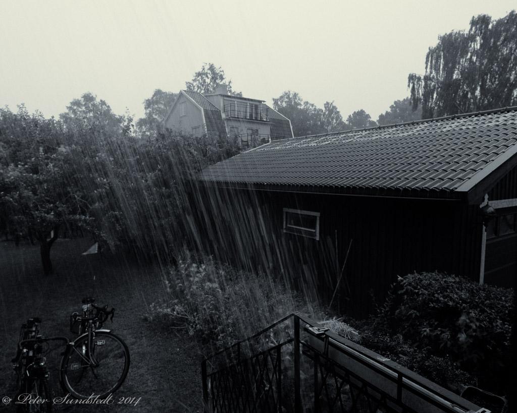gallery_1251_413_162087.jpg