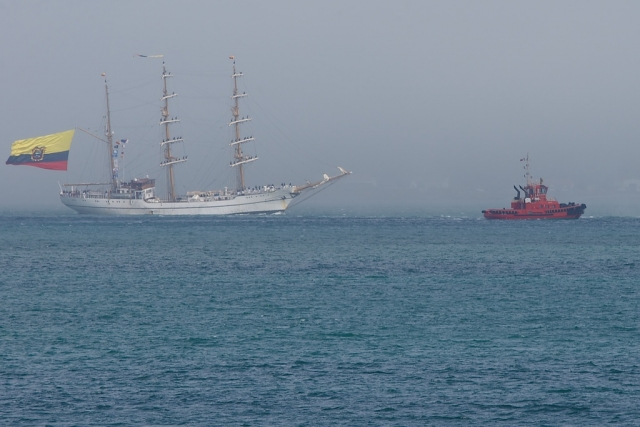 The Ecuadorian tall sailing ship, The Guayas, entering Wellington Harbour in front of bank of fog