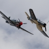 P 40 Kittyhawk And Corsair In flight