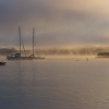 Misty dawn In Paihia