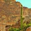 Walnut Canyon scene (2)