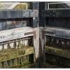Caen Hill Locks 15