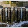 Caen Hill Locks 9