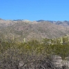 February Sabino Canyon