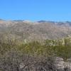 February Sabino Canyon