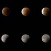 Blood moon & lunar eclipse