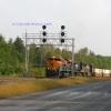 Heritage Unit leading train @ Delanson,NY
