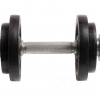 Dumbbell with two weights isolated as Cut
