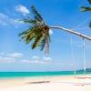 65 White sand 3.jpg