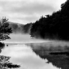 Misty Morning on the Pond ©C.R.Hill
