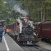 Puffing Billy Belgrave.