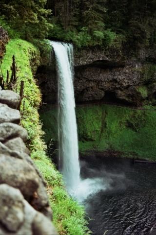 12A 0144 Silver Falls, Oregon