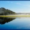 dinefwr park pond