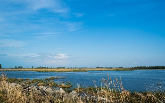 Metzger's Marsh