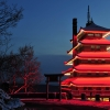 Japenese Pagoda At night