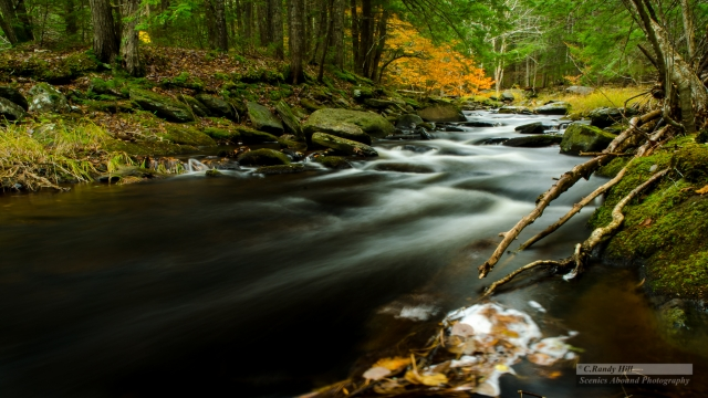 Meandering stream ©C.R.Hill