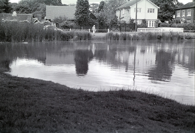 Shenfield Common Pond