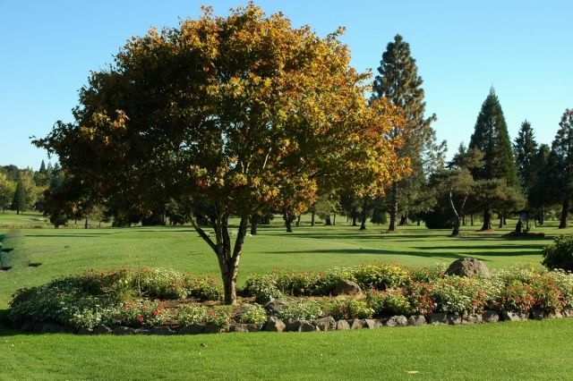 Rock Creek Country Club, Portland, Oregon