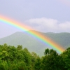 Tennessee rainbow...