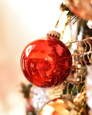 Reflection ornament