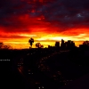 L.A fire sky