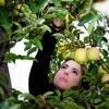 Apple Picking Beauty