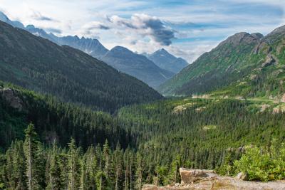 Alaskan vista-1.jpg
