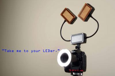 LEDer.jpg