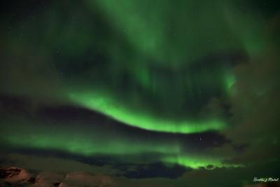 lights_00164.jpg
