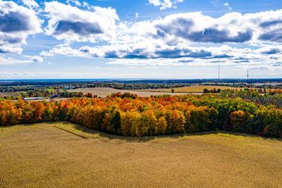 Durham arial Fall colours 20201005-26.jpg